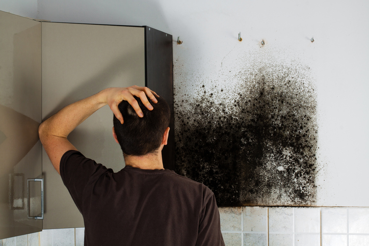 How To Get Rid Of Mold In Air Ducts