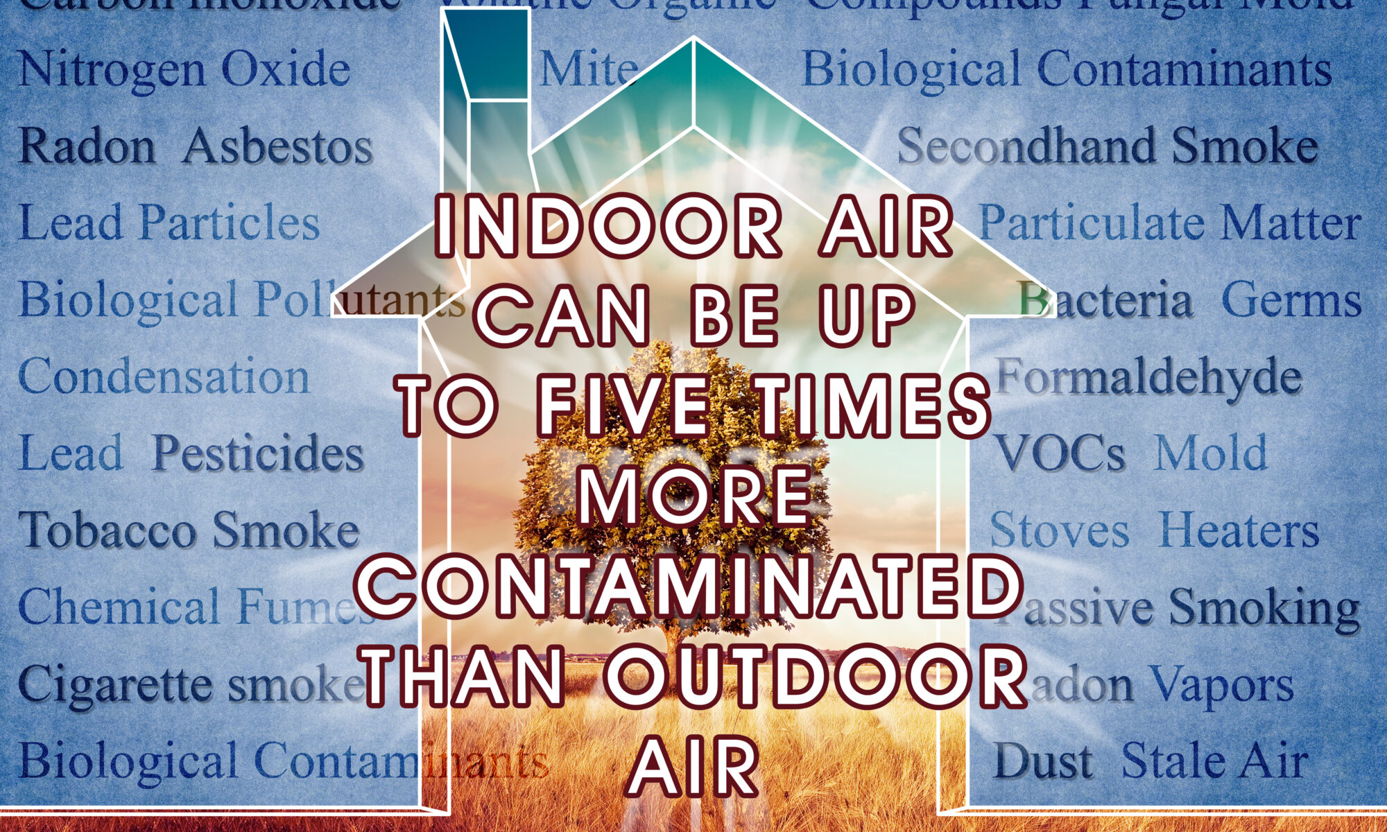 common indoor air quality problems